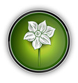 white flower on the green symbol vector image