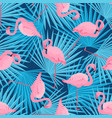 graceful flamingos and palm leaves tropical vector image vector image