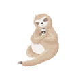 lazy sloth holds cup of coffee sitting on the vector image