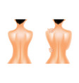 naked back of beautiful oiled woman vector image