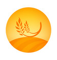 round logo emblem of wheat harvest - label vector image vector image