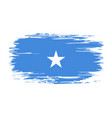 somalian flag brush grunge background vector image vector image