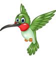Cartoon funny hummingbird flying isolated vector image