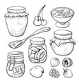 fruit and berry jam hand drawn set vector image