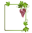 green frame with a bunch of grapes vector image vector image