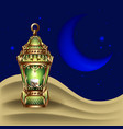 night background with vintage gold lantern vector image