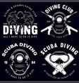 set of scuba diving club and diving school badges vector image