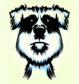 Terrier Dog Portrait vector image