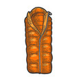 tourist sleeping bag color sketch vector image vector image