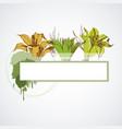 grunge floral banner spring design frame for text vector image vector image