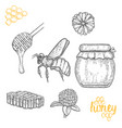 hand drawn honey set over white background vector image