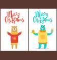 merry christmas poster congratulation from bears vector image