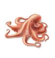 realistic octopus marine squid 3d mollusk vector image