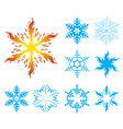 snowflakes iv002 vector image
