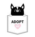 adopt me black chihuahua dog in the pocket vector image vector image