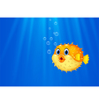 Cartoon funny puffer fish swimming in the ocean vector image vector image
