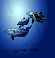 Floatin dolphins vector image