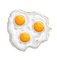 fried chicken eggs vector image