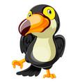 funny toucan cartoon dancing vector image