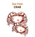 menu card template crab fresh seafood vector image