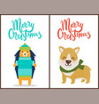 merry christmas two bright congratulation posters vector image vector image