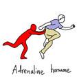 metaphor function of adrenaline hormone vector image vector image