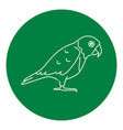 senegal parrot icon in thin line style vector image vector image