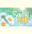 spring sale concept summer background with vector image vector image