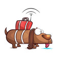 spy dog - cartoon vector image