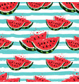 watermelon seamless pattern hand-drawn juicy vector image