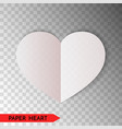 white paper heart isolated on transparent vector image