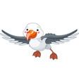 albatross vector image