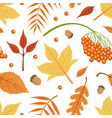 autumn leaves seamless pattern bright fall vector image vector image