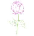 drawing a purple-colored rose with green vector image vector image