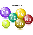 Essential chemical minerals vector image vector image