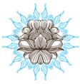 hand drawn peony sketch style floral design vector image