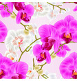 seamless texture stem with flowers and buds vector image vector image
