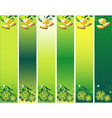 St Patricks Day Banner Set with Leafs and Money in vector image vector image