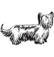 decorative standing portrait of skye terrier vector image vector image