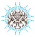 hand drawn peony sketch style floral design vector image vector image
