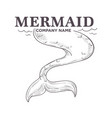 mermaid tail isolated monochrome sketch business vector image