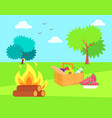 nature and bonfire with basket and fruits veggies vector image vector image