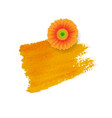 orange blot with gerber vector image vector image