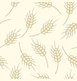 seamless pattern of wheat doodles vector image