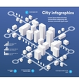 3D city isometric vector image vector image
