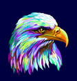 abstract multi-colored portrait a eagle on a d