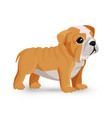 bulldog puppy cute toy in white and beige color vector image vector image