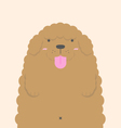 cute big fat brown Poodle dog vector image vector image