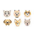 cute cartoon cats and dogs muzzle set vector image vector image