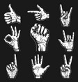 hand signs and gestures collection graphic vector image